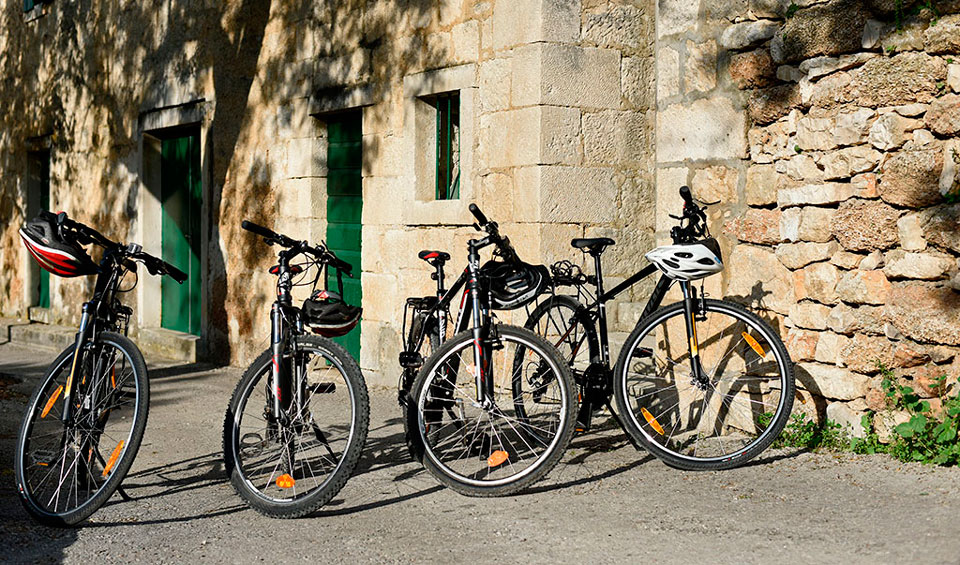 Bike Rental Prices